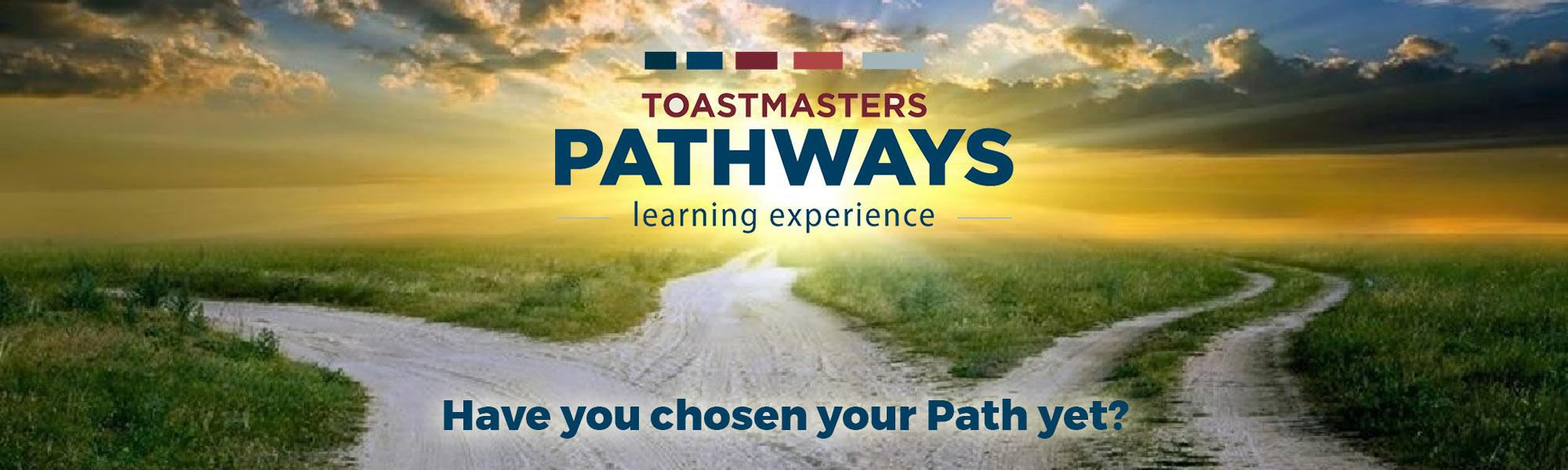 "Pathways Experience.  Three paths leading off to different directions. ""Have you chosen your path yet?"""