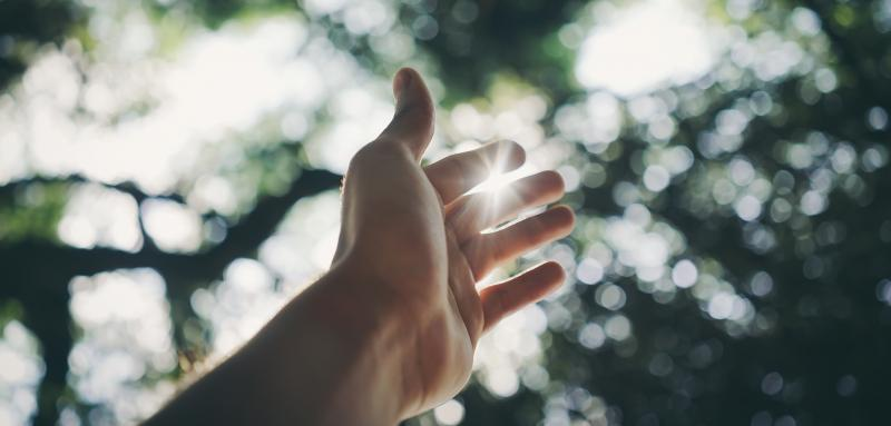 Selective Focus Photography Of Hand (photo by Ricardo Esquivel from Pexels)