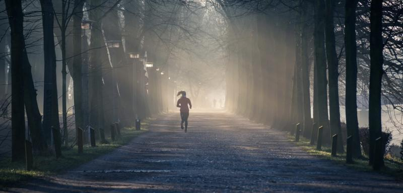 Person running near street between tall trees (photo by Philip Ackermann from Pexels)